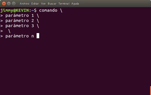 Ventana de comando con barra invertida para pasar varios parámetros largos