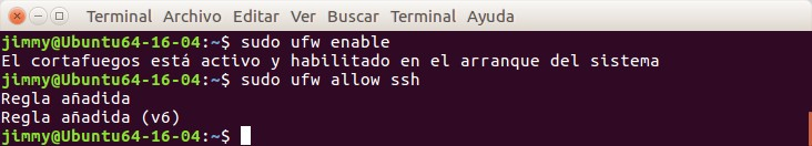 ufw enable & ufw allow ssh