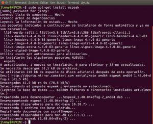apt-get install espeak