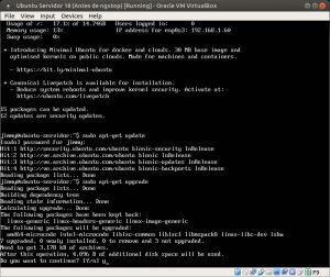 Ubuntu Servidor 18 apt-get upgrade