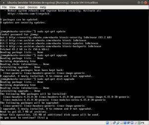Ubuntu Servidor 18 sudo apt-get dist-upgrade