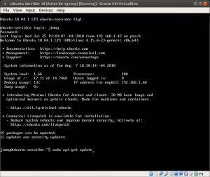 Ubuntu Servidor 18 sudo apt-get update