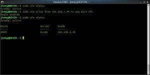 Configurando el muro de fuego en Ubuntu (servidor NFS)