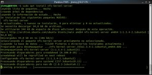 sudo apt install nfs-kernel-server