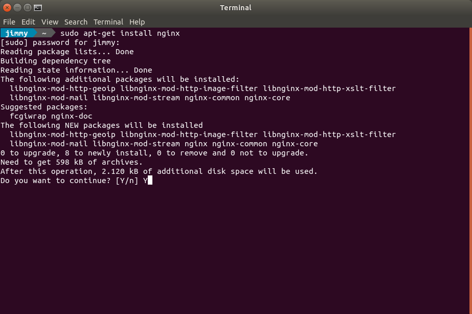 apt-get install nginx
