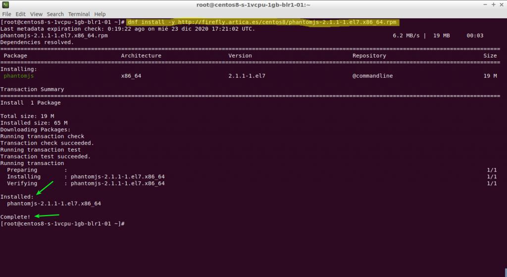 dnf install -y http://firefly.artica.es/centos8/phantomjs-2.1.1-1.el7.x86_64.rpm